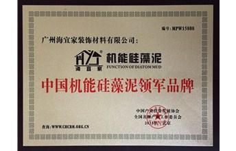 庆贺海宜家荣获中国机能排列三字谜泥领军品牌